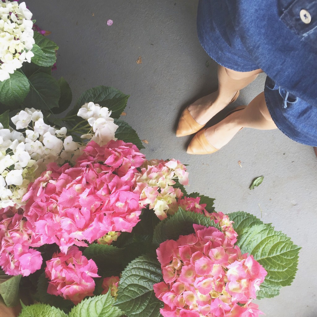 5 Tips For Planting Flowers At Home