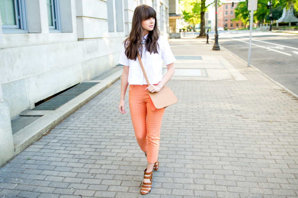 anthropologie_perfect_pant_fashion_blog-3