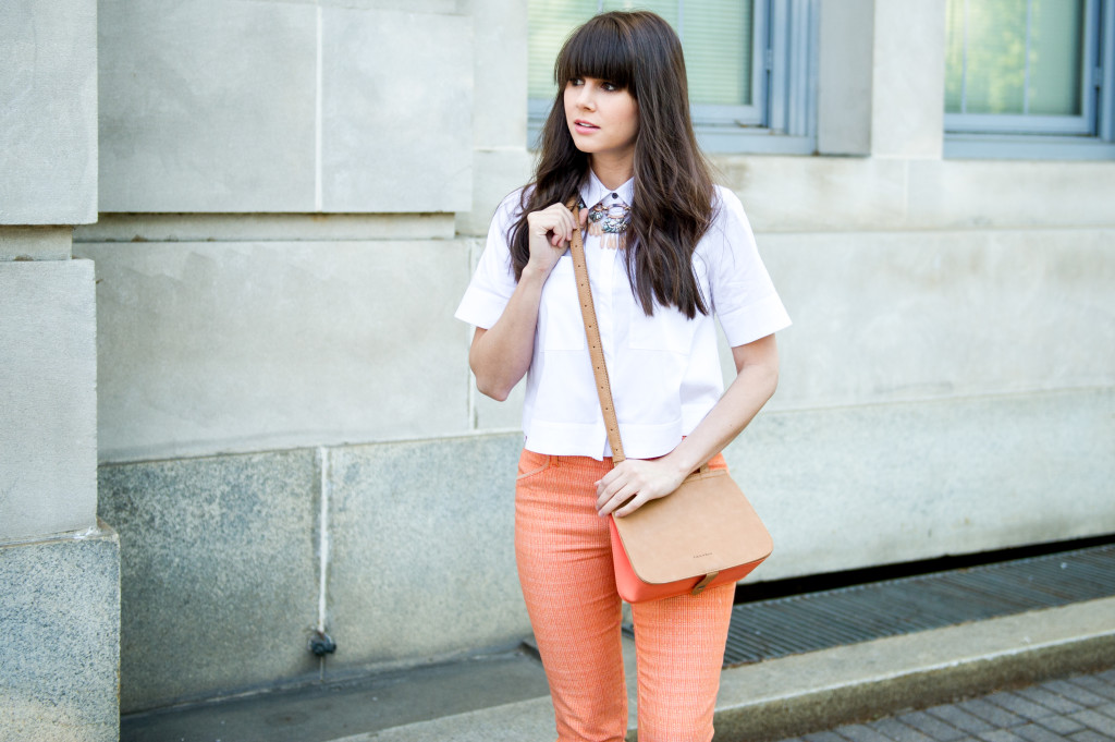 anthropologie_perfect_pant_fashion_blog-5
